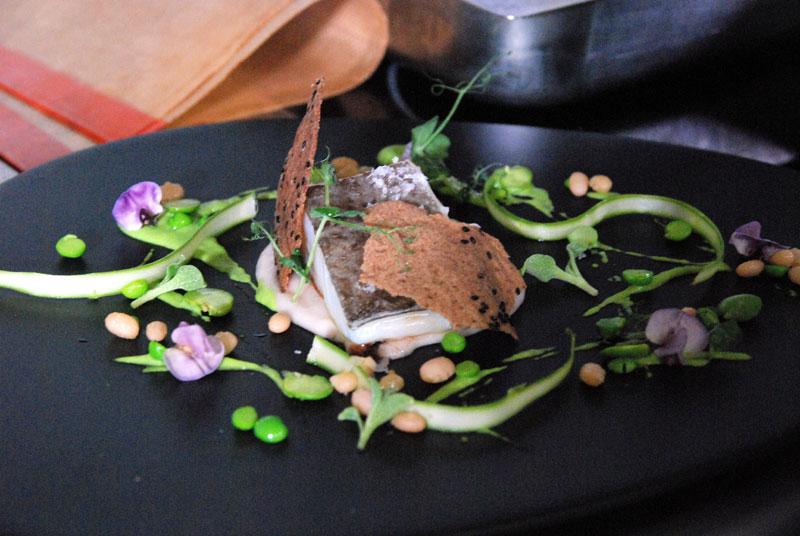 culinaria14-01