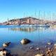 Olio di Fousseni mette il sole della Sicilia in barattolo