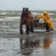 I pescatori a cavallo di Oostduinkerke