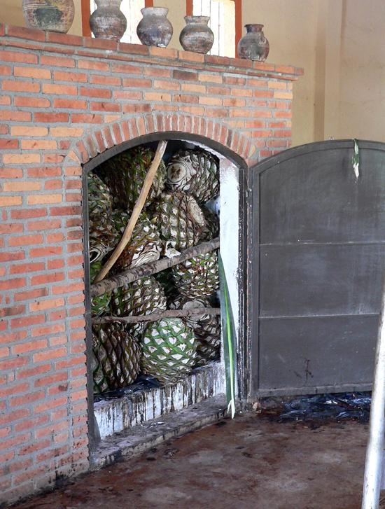 """Le """"pigne"""" di agave nel forno della distilleria"""